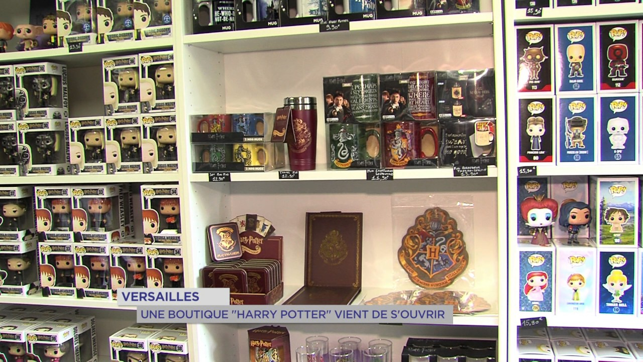 insolite une boutique harry potter versailles tv78 la cha ne des yvelines page 118755. Black Bedroom Furniture Sets. Home Design Ideas
